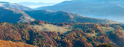 Sunbeam and autumn misty mountain panorama. Sunbeam and autumn misty morning mountain panorama with colorful trees on slope Royalty Free Stock Images