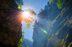 Sunbeam in the branches of a tree. In the Chegem waterfalls Stock Photography