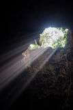 Sunbeam in the cave Stock Photography