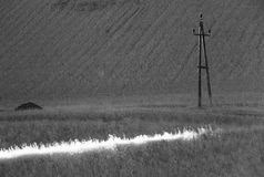 Sunbeam in field with utility pole Royalty Free Stock Photos