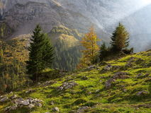 Sunbeam in harsh mountain valley by fall colors Royalty Free Stock Images