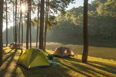 Sunbeam in the morning around camping site. 1 Stock Photography