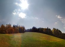 Sunbeam over a green meadow and fir trees in autumn panorama.  royalty free stock photos