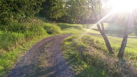 Sunbeam Path Stock Image