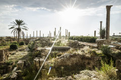 Sunbeam after rain in ruins in Tyre, Sour, Lebanon Royalty Free Stock Images