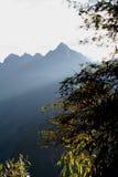 sunbeams утра Стоковые Фотографии RF
