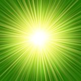 Sunbeams abstract background. Sunbeams green abstract vector illustration background Royalty Free Illustration