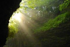 Sunbeams da manhã Fotos de Stock Royalty Free
