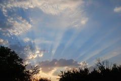 Sunbeams. The evening landscape, sunbeams is in blue sky Stock Image