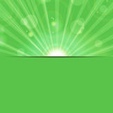 Sunbeams on a green background Stock Images