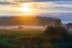 Sunbeams leje się przez gęstych chmur obrazy royalty free