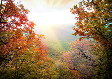 Sunbeams in mountains Royalty Free Stock Images