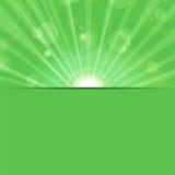 Sunbeams na zielonym tle Obrazy Stock