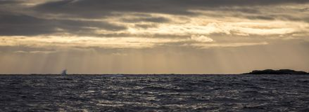 Sunbeams over stormy sea, with warm sky and blue ocean. Stock Photo
