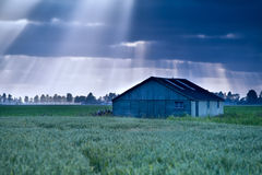 Sunbeams over wooden hut on field Royalty Free Stock Photography
