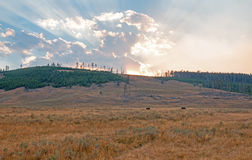 Sunbeams and sunrays through sunset clouds in the Hayden Valley in Yellowstone National Park in Wyoming Stock Photos