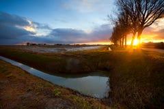 Sunbeams at sunrise in farmland. Sunbeams throung the tree at sunrise in dutch farmland royalty free stock photography