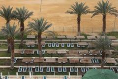 Sunbed и пальмы рядом с пляжем Стоковые Фотографии RF