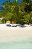 Sunbed. S on white sandy beach on vilamendhoo island royalty free stock image