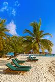 Sunbed on Maldives beach. Nature vacation background Stock Photos