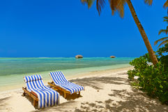 Sunbed on Maldives beach Royalty Free Stock Photo
