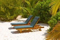 Sunbed on Maldives beach. Nature vacation background Stock Image