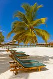 Sunbed on Maldives beach. Nature vacation background Royalty Free Stock Photos