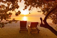 Sunbed on Maldives beach. Nature vacation background Royalty Free Stock Image