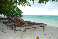 Sunbed on the Maldivian beach. Empty sunbeds on the beach, Maldives royalty free stock photography