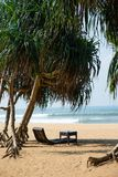 Sunbed on sandy beach. Luxury sunbed under tropical trees on beautiful sandy beach Royalty Free Stock Images