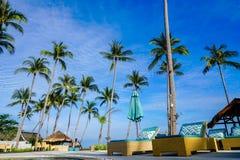 Sunbeds бассейном в горячей тропической стране Стоковое фото RF