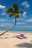 Sunbeds auf einem karibischen Strand Lizenzfreie Stockfotografie