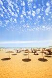 Sunbeds auf sandigem Strand Lizenzfreies Stockbild