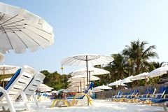 Sunbeds on the beach. Sunbeds and umbrellas on the beach royalty free stock photography
