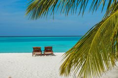 Sunbeds on the beautiful beach at the tropical island. At Maldives Royalty Free Stock Photo