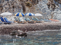 Sunbeds at the Black Beach. Akrotiri. Santorini. Stock Photos
