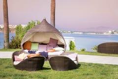 Sunbeds da sala de estar em um jardim verde em um fundo do mar Imagem de Stock