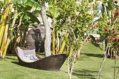 Sunbeds da sala de estar em um jardim verde em um fundo do mar Fotos de Stock Royalty Free