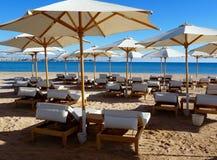 Sunbeds e pára-sóis na praia Imagem de Stock