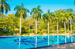 Sunbeds and high palm trees at swimming pool Royalty Free Stock Photography