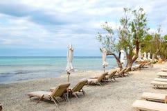 Sunbeds i kwitnący drzewo na plaży przy nowożytnym luksusowym hotelem Fotografia Stock