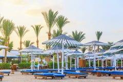 Sunbeds i parasole na piaskowatej plaży obrazy royalty free