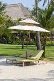 Sunbeds jest na plaży drzewkach palmowych i, Tajlandia Zdjęcia Royalty Free