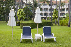 Sunbeds are on the lawn Royalty Free Stock Photos