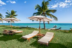 Sunbeds on the lawn. Overlooking the sea Royalty Free Stock Photos