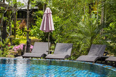 Sunbeds next to the pool in the tropical garden, Thailand Royalty Free Stock Photo