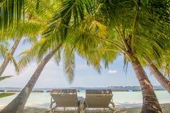 Sunbeds onder palmen bij het tropische strand bij de eilandtoevlucht royalty-vrije stock afbeeldingen