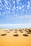 Sunbeds på sandig strand royaltyfri bild