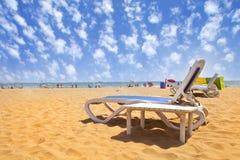 Sunbeds på sandig strand Royaltyfria Bilder