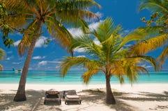 Sunbeds su una spiaggia tropicale Immagine Stock